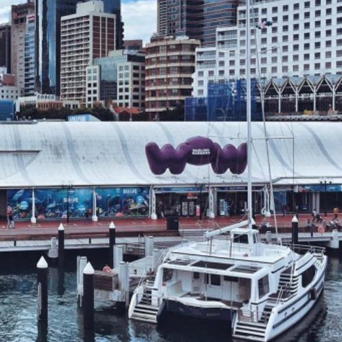 New South Wales Btn Sydney Play