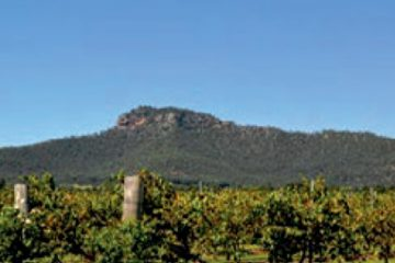 4D3N Vineyards & Views Btn Vineyards Sydney