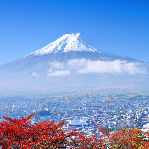 Muslim Packages MOUNT FUJI