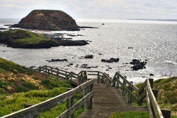 7D6N Coastlines & Wildlife Melbourne6 btn
