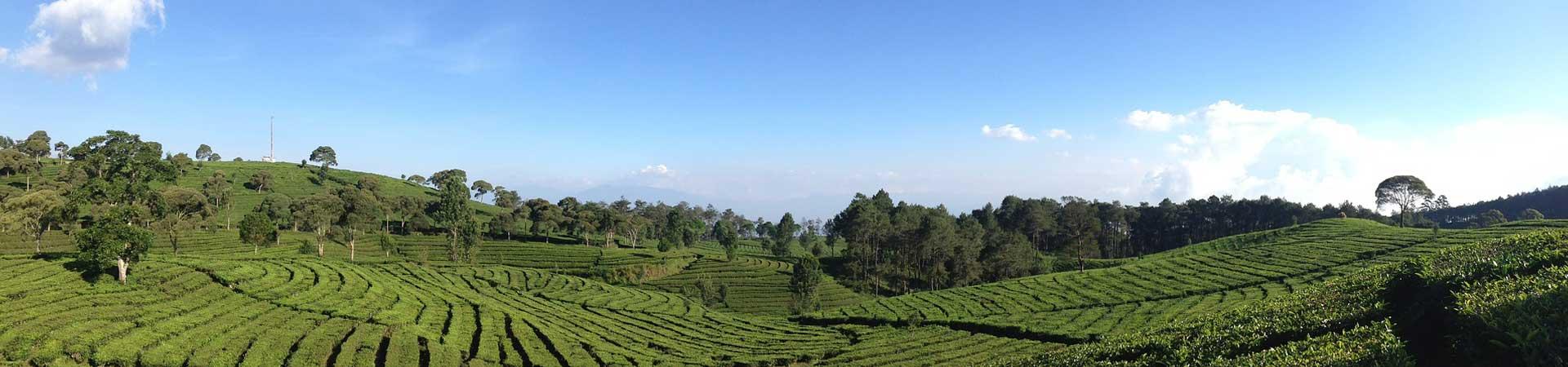 4D3N Bandung North Crater