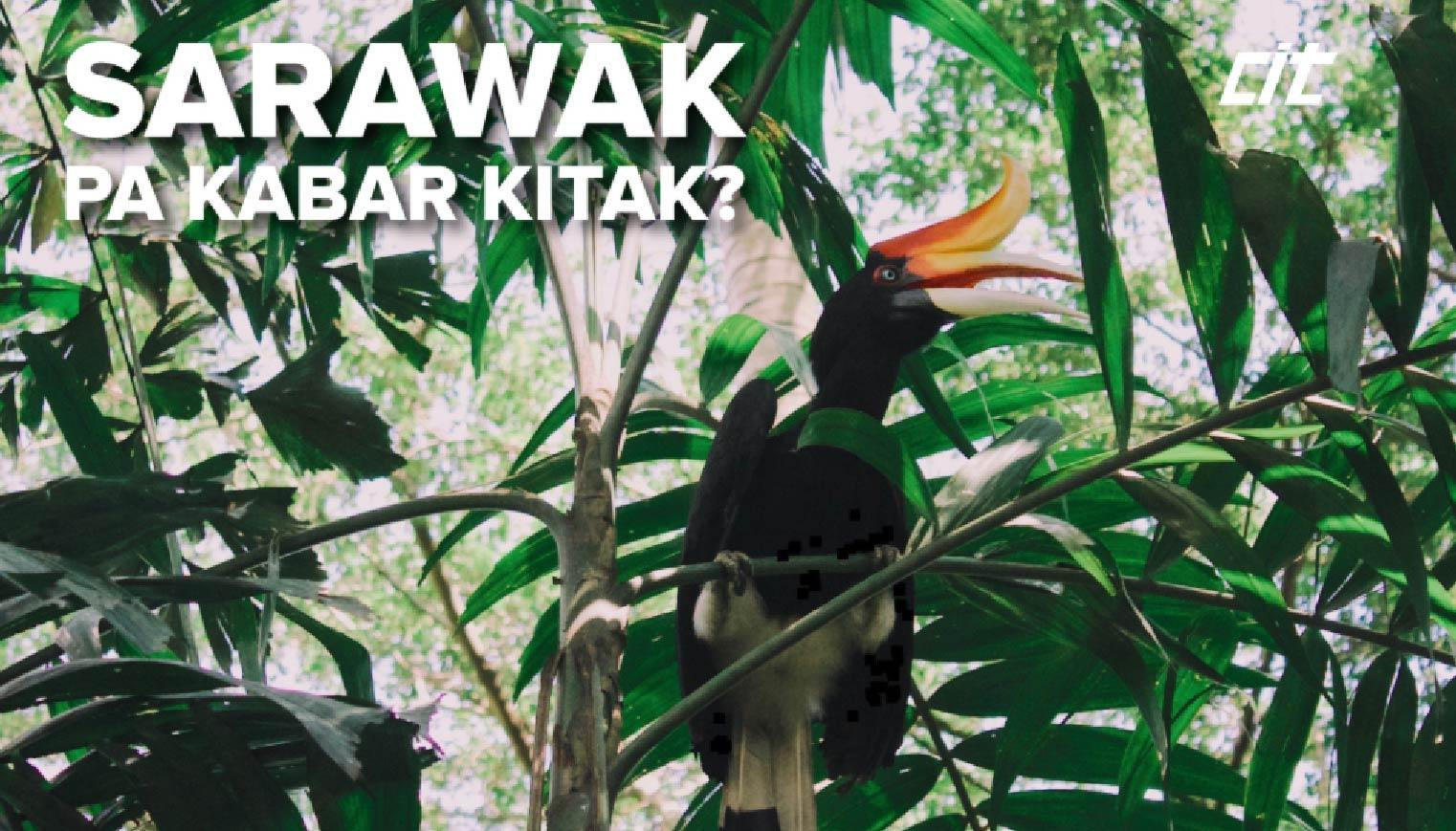EDM Sarawak 01